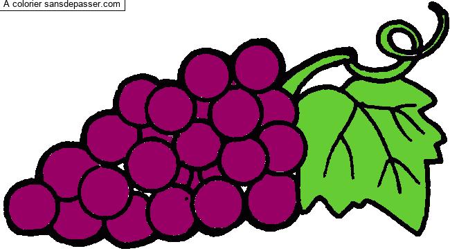 Coloriage Raisin et feuille de vigne - Sans Dépasser