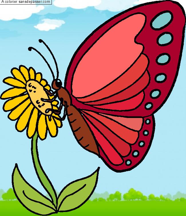 Dessin Colorié Papillon Qui Butine Par Un Invité Sans