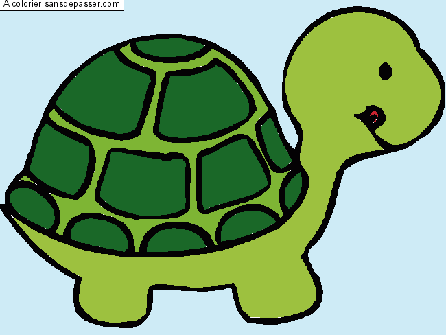 Coloriage jolie tortue sans d passer - Comment dessiner une tortue ...