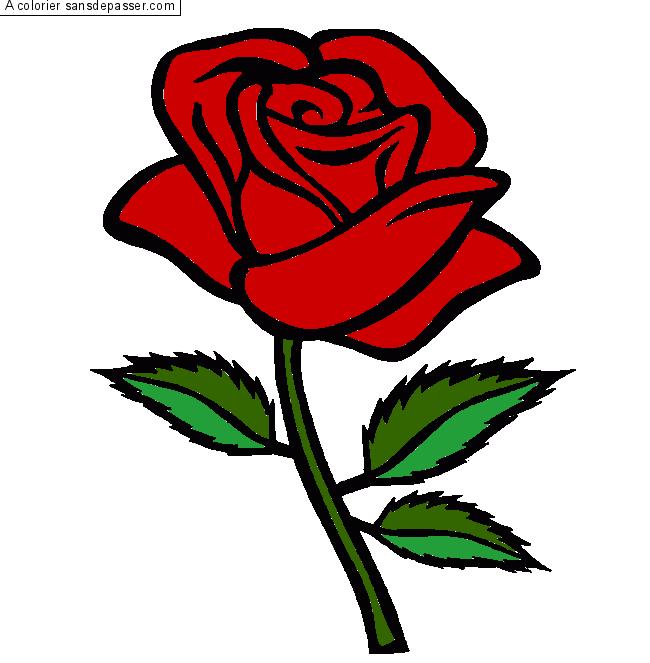 Dessin Colorié Rose Rouge Par Un Invité Sans Dépasser