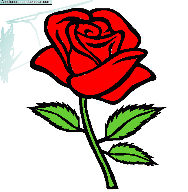 Coloriage Rose rouge