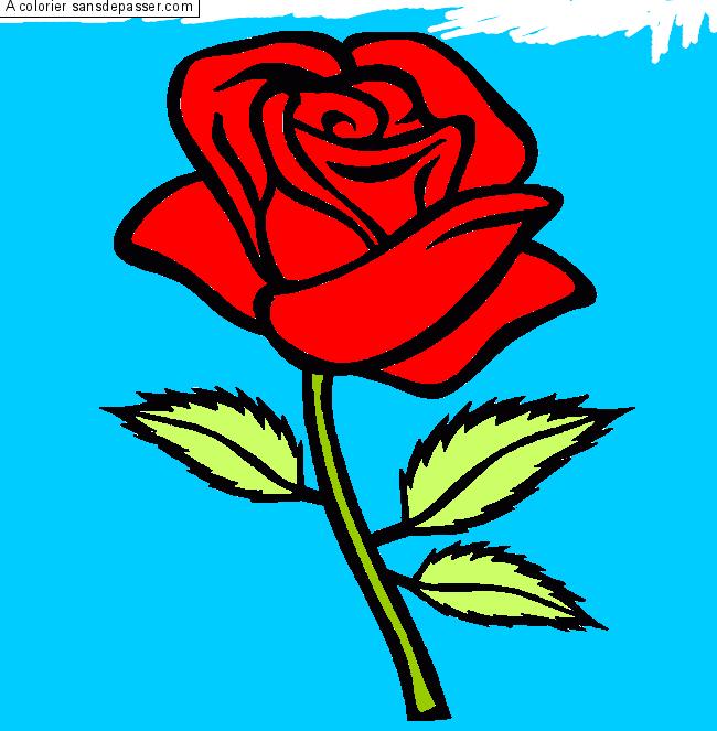 Dessin colori rose rouge par un invit sans d passer - Dessin de rose rouge ...