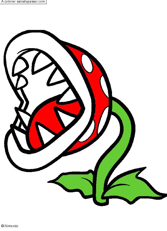 plante carnivore mario dessin