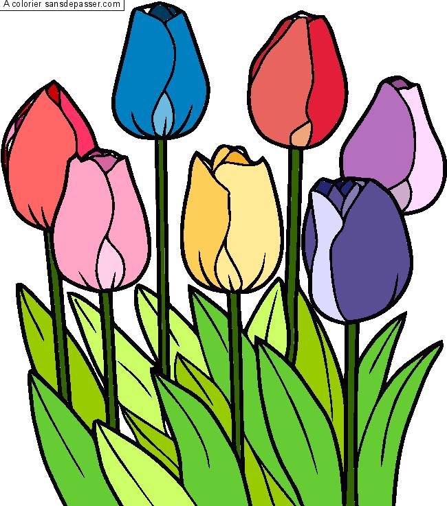 Dessin Colorie Tulipes Par Roselucie Sans Depasser