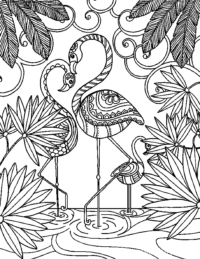 Coloriage Flamant rose par un invité